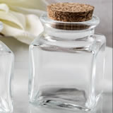 Perfectly Plain Collection square clear glass treat jar