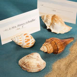 <i>Natural Selections Collection</i> Shell Design Place Card Holders