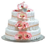 Baby Diaper Cake: Pink Orchids (2 or 3 Tiers)