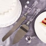 Acrylic Handled Cake Server & Knife set